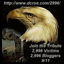 2996_triubute_eagle_with_tear_1